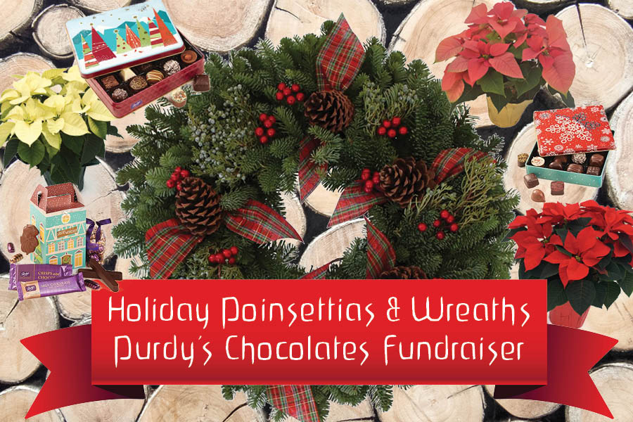 Poinsettias-and-Chocolate-postcard