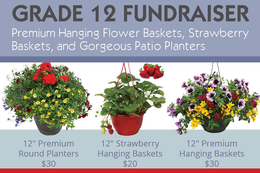 VWS-Hanging-Baskets-fundraiser-2017-slider